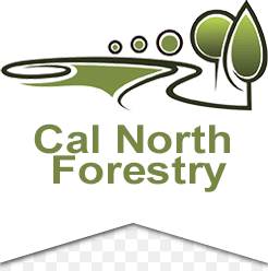 Cal North Forestry