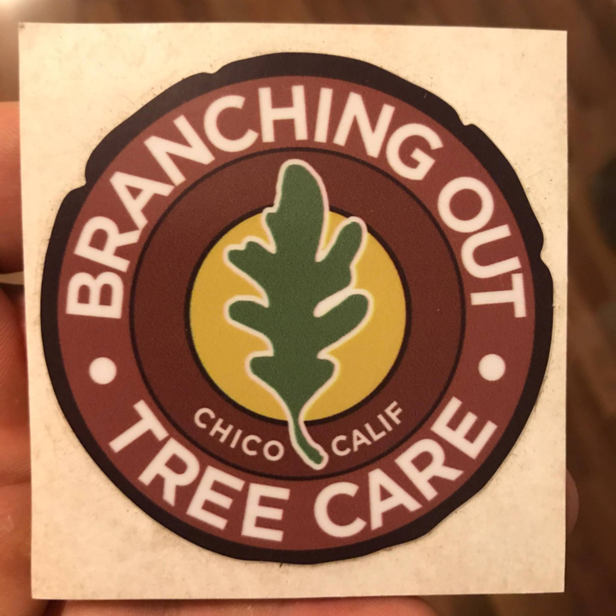 Branching Out Tree Care