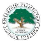 Enterprise Elementary School District