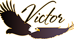 Victor Community Support Services